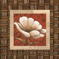 Plantation Themes B Fine-Art Print