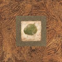 Sedona Naturals A Fine-Art Print