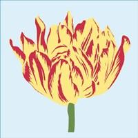 Soho Tulip II Fine-Art Print