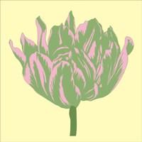 Soho Tulip IV Fine-Art Print