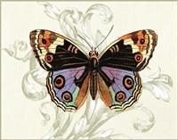 Butterfly Theme I Fine-Art Print