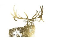 Gold Foil Elk Fine-Art Print