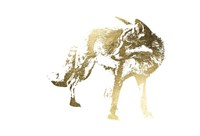 Gold Foil Fox Fine-Art Print