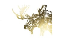 Gold Foil Moose Fine-Art Print