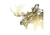 Gold Foil Moose Fine-Art Print