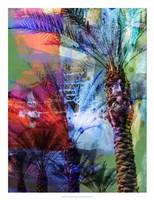 Desert Palm Abstract Fine-Art Print