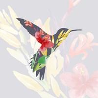 Grey Floral Hummingbird Fine-Art Print