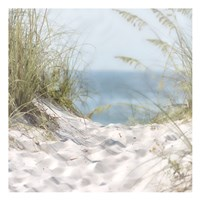 Over The Coastal Dune Fine-Art Print