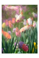 Tulip Swim A Fine-Art Print