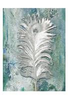 Silvery Peacock 1 Fine-Art Print