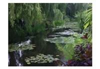 Giverny Pond Fine-Art Print
