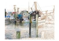 West Marine Fine-Art Print