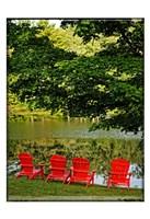 A Family Of Adirondak Chairs Fine-Art Print