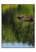 A Floating Garden Fine-Art Print