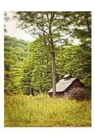Country Barn 2 Vertical Vintage Fine-Art Print