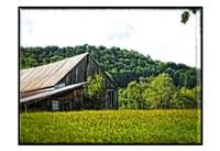 Country Barn 4 Fine-Art Print