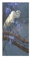 Egret in Wisteria Fine-Art Print