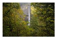 Oregon Waterfall Fine-Art Print