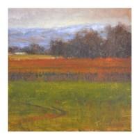 Red Vineyard Near The River I Fine-Art Print