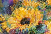 Blue Sunflowers Fine-Art Print