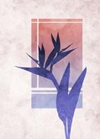 Ombre Bird of Paradise Flower Fine-Art Print