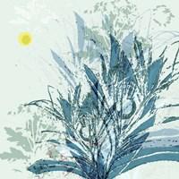 Martin Calme Fine-Art Print