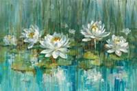 Water Lily Pond Fine-Art Print