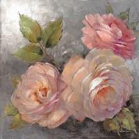 Roses on Gray II Framed Print