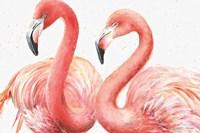 Gracefully Pink I Fine-Art Print