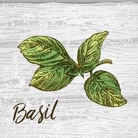 Basil on Wood Framed Print