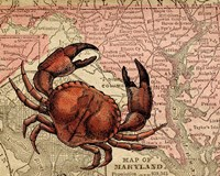 Maryland's Jumbo Crabs Fine-Art Print