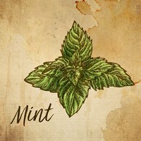 Mint on Burlap Fine-Art Print