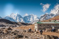 Trekkers and yaks in Lobuche on a trail to Mt Everest Fine-Art Print