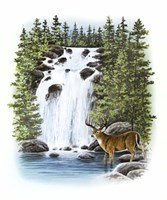 Stag Waterfall Fine-Art Print