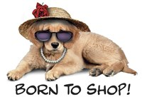 Shop Pup Fine-Art Print