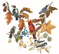 Fall Birds Fine-Art Print