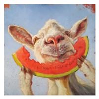 Summer Treat Fine-Art Print