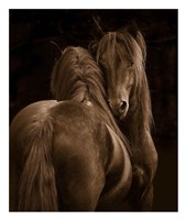 Tenderness I Fine-Art Print