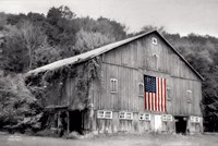 Patriotic Farm II Fine-Art Print
