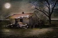 Forgotten in Moonlight Fine-Art Print