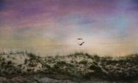 Wings of Dawn Fine-Art Print