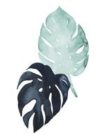 Untethered Palm IV Fine-Art Print