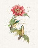 Colorful Hummingbirds I Fine-Art Print