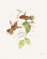 Colorful Hummingbirds II Fine-Art Print