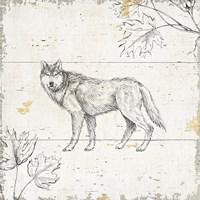 Wild and Beautiful VIII Fine-Art Print