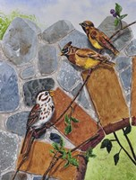 Song Sparrow and Cedar Waxwings Fine-Art Print