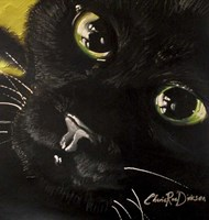 Cat's Eyes Fine-Art Print
