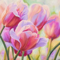 Tulips in Wonderland I Fine-Art Print