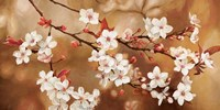 Sakura Fine-Art Print