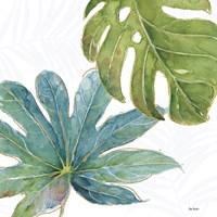Tropical Blush VII Fine-Art Print